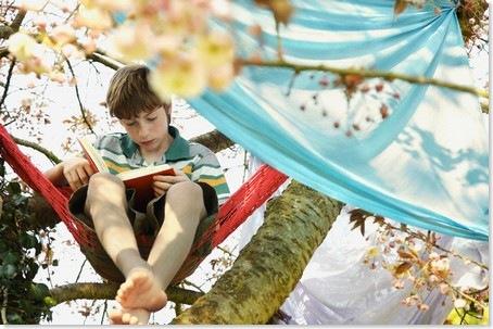 Boy Reading Book in Tree © Jutta Klee/Corbis