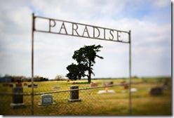 Cemetery Named Paradise© Owaki/Kulla/Corbis