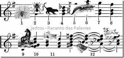 musicanimal